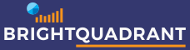 BrightQuadrant - Enterprise Governance Solutions